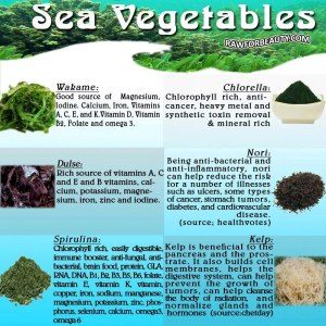 sea veggies