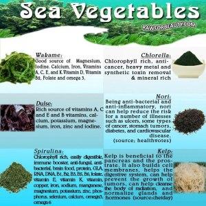 sea veggies