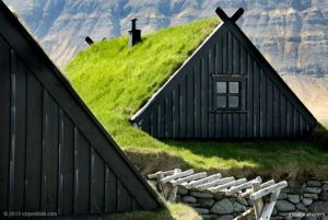 Viking Green Roof