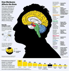 how-marijuana-affects-brain