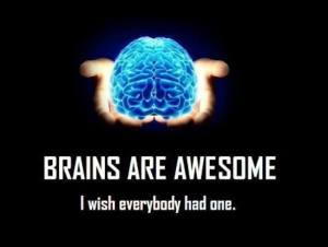 brain are awesome
