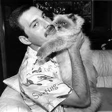 Freddie And Deliah