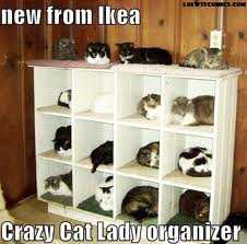 Ikea Crazy Cat Lady Organizer