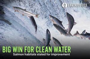 IT'S A WIN-WIN! By reducing stormwater pollution in Clark County, WA, it will lead to larger salmon populations within the region. Improving the community as a whole, this was voted in by the county commissioners to help local ecosystems. http://ow.ly/s1twn Stormwater pollution, which is created when rain mixes with debris, chemicals, dirt, and other pollutants and flows into storm sewer systems and then into local waterways, is the number one source of water pollution in urban and developing areas in Washington state.