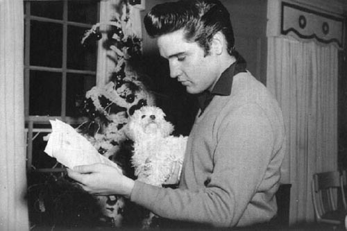 Elvis and his mother's dog