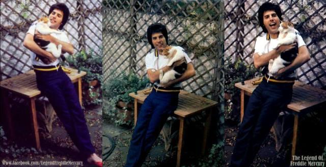 Freddie and Romeo