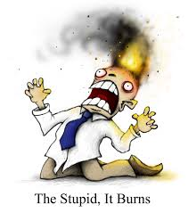 The stupid it burns
