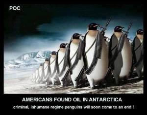 Penguin Regime