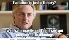 Richard Dawkins gravity meme
