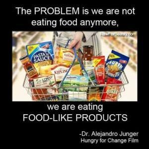 The Problem - Dr Alejandro Junger