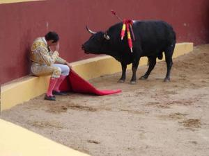 Compassion: This incredible photo marks the end of Matador Torero Alvaro Munera's career. He collapsed in remorse mid-fight when he realized he was having to prompt this otherwise gentle beast to fight. He went on to become an avid opponent of bullfights. Even grievously wounded, the bull did not attack Munera. May we all support the welfare of non-human species.