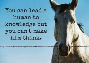knowledge and thinking