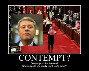 harper and contempt
