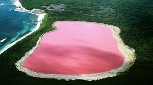 Pink Lake In the land down under