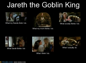 jareth_what_i_think_i_do_meme_by_panda_cat-d4xuyzk