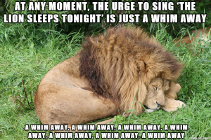 funny-pictures-lion-jungle-whim-away