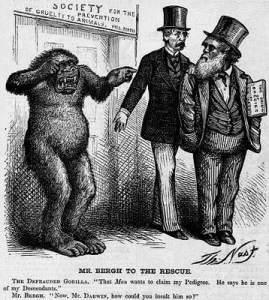 Gorilla-centric political cartoon