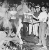 Beatle-burning