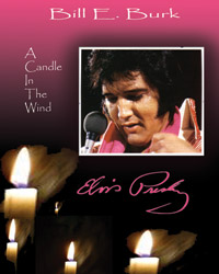 book_acandleinthewind