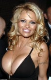 1409587097003_Image_galleryImage_Pamela_Anderson_attends_t