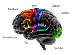 Brain11