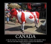 canada-humor-funny-canada-demotivational-poster-1259197173