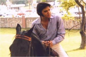 elvis on horseback