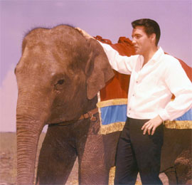 elvis_with_elephant2