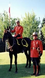 Justice The Horse 2004 Nina Tryggvason