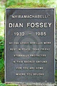 tombe-de-dian-fossey-19513304