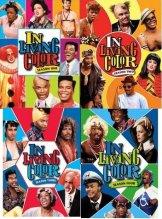 -In-Living-Color-Four-Seasons-DVD-Set---Season-1-2-3-4