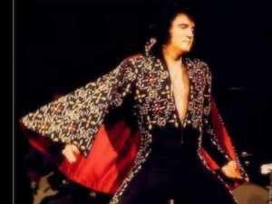 matador Elvis