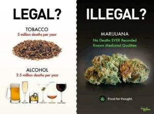 alcohol_vs_marijuana