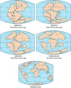 pangea-continental-drift-1