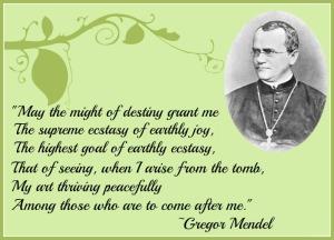Quote-of-gregor-Mendel