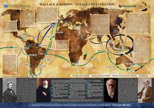 Wallace & Darwin - Voyages to Evolution Map