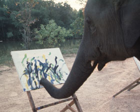 why_do_elephants_paint