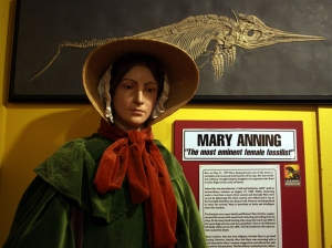 Mandatory Credit: Photo by Richard Gardner/REX (1430250ad) Mary Anning was a leading fossil collector, Dinosaur Museum, Dorchester, England, Britain Dorset, Britain - Aug 2011
