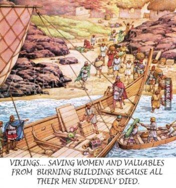 Vikings_fd0d97_4900799