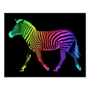 colorful_rainbow_zebra_poster-rc7778aa877f04b9892f762ef7040bd7e_wvt_8byvr_324
