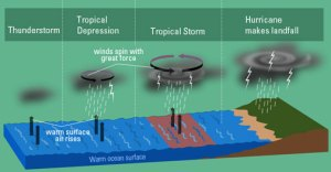 how-do-hurricanes-form-young-people