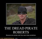 dread pirate roberts ninja