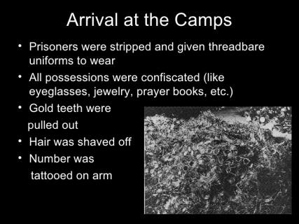 holocaust-faq-20-728