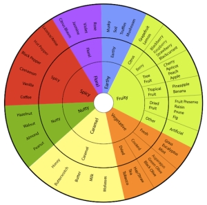Taste-Wheel-5502