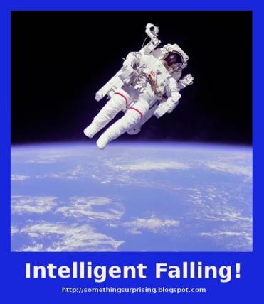 2.bp.blogspot.com/-7B5ifGvYiRI/ThNNjrWuq4I/AAAAAAAAAHs/Mq3ed8iMsnU/w1200-h630-p-nu/Intelligent-Falling.jpg