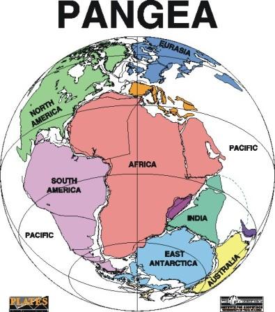 pangea2