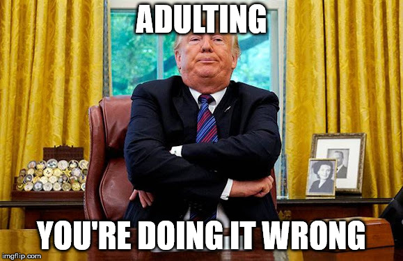 adultingmeme